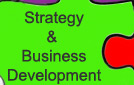 Strategy & Business Development